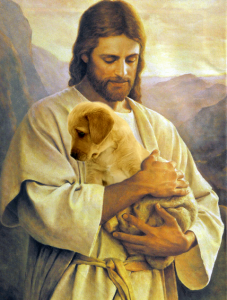 Jesus holding a puppy (badly photoshopped in over a lamb).