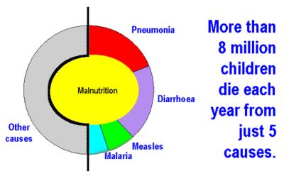 Under 5 Mortality