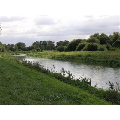 River Witham (near Boston)